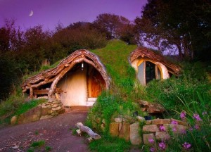 Hobbit-Influenced Houses