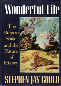 LitStack Recs: Wonderful Life: The Burgess Shale and the Nature of History & Blue Nights